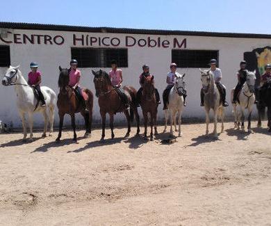Aprende equitación en Sevilla