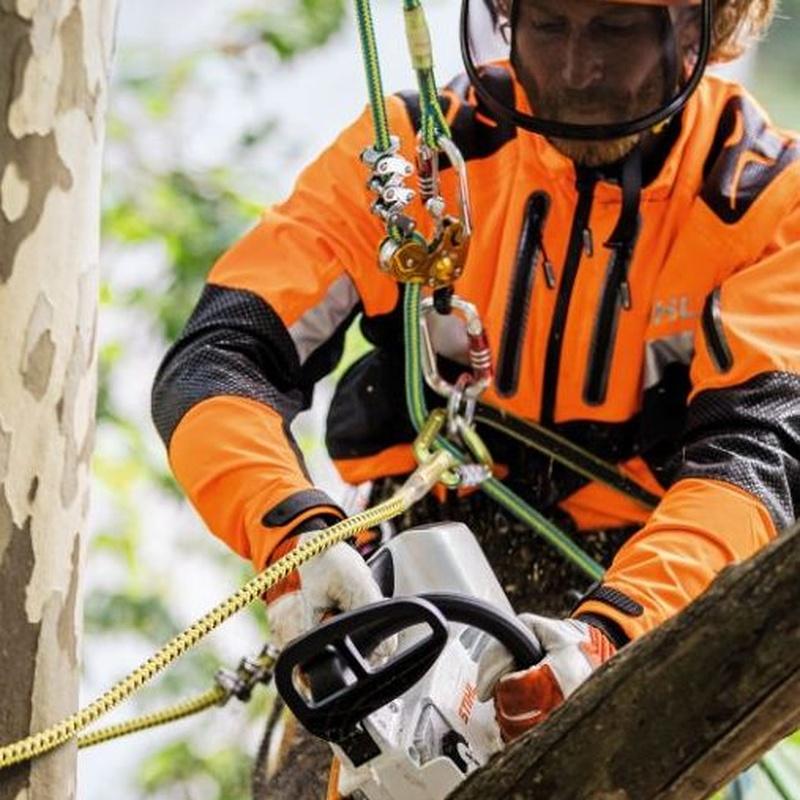 Material de arborismo y seguridad: Productos y servicios de Maquiagri