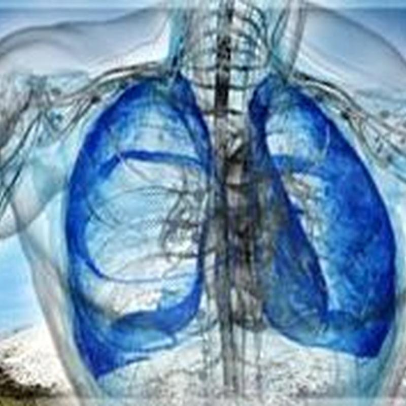 Afecciones respiratorias: Productos de Herbolario San Bernardo122