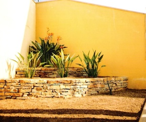 Proyectos de jardinería en Valencia