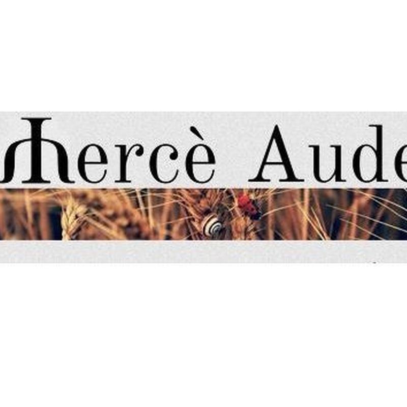 Adicciones / Adiccions: Tratamientos de Audet Bordoll, Mercè