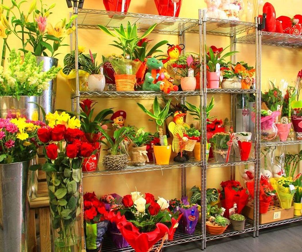 El maravilloso lenguaje de las flores... Díselo con flores