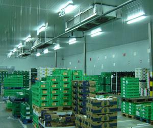 Montaje y mantenimiento de plantas frigoríficas para industrias en Galicia