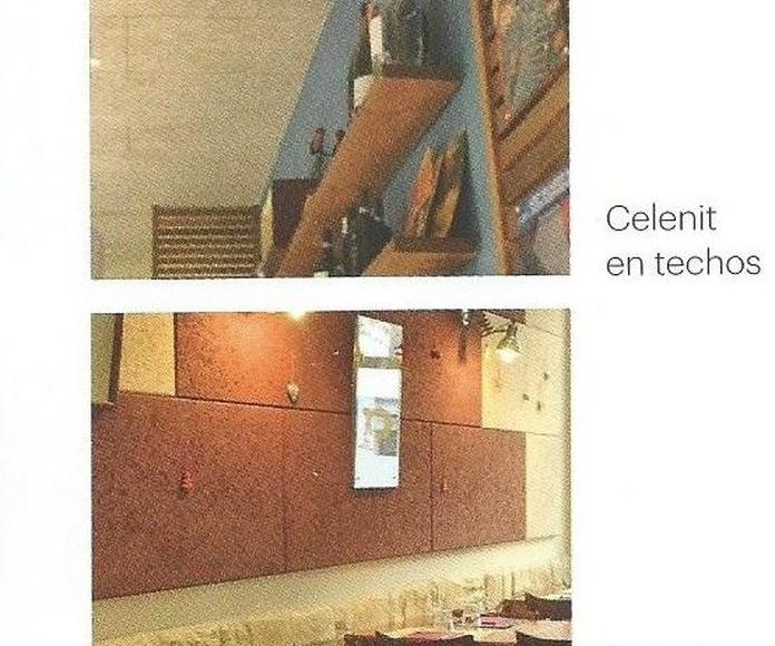 Celenit paredes y techos