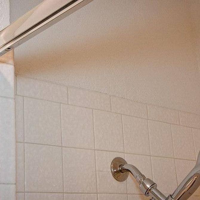 ¿Qué debes tener en cuenta a la hora de elegir una mampara de baño?