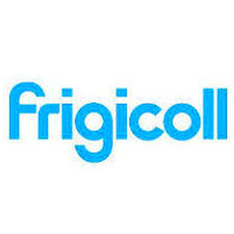 Servicio oficial frigicoll: Servicios de Friser