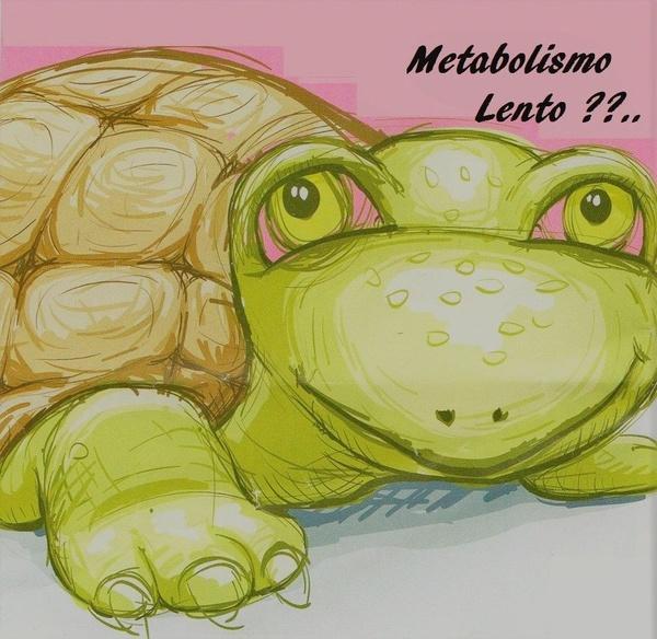 METABOLISMO LENTO. POR QUE  ???: TRATAMIENTOS  de Metabolic Zen