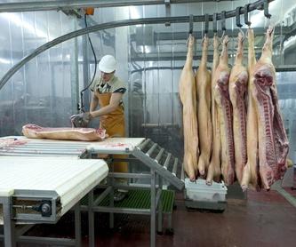 Frío industrial: Productos y servicios de Luparia Instalaciones
