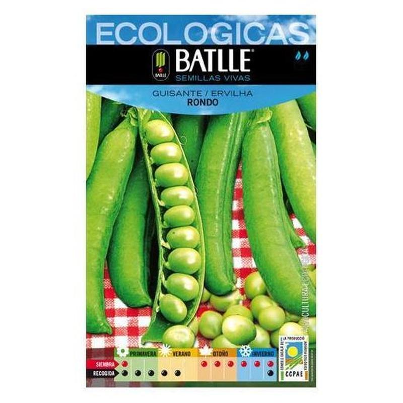 Semillas ecológicas de Guisante 1/2 enrame rondo Ref. 23