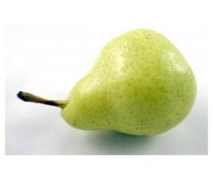 Mundifruit