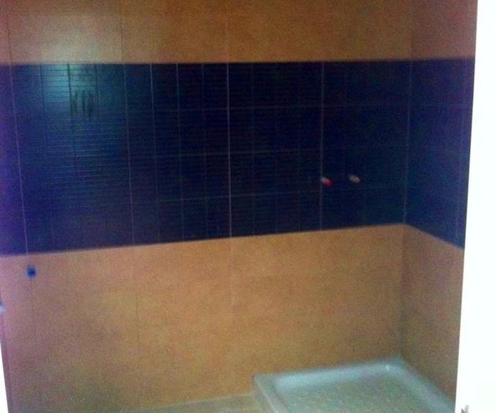 Baño en pladur.: Trabajos realizados de REFORMAS, INSTALACIONES Y CONSTRUCCION ARAGON SLU