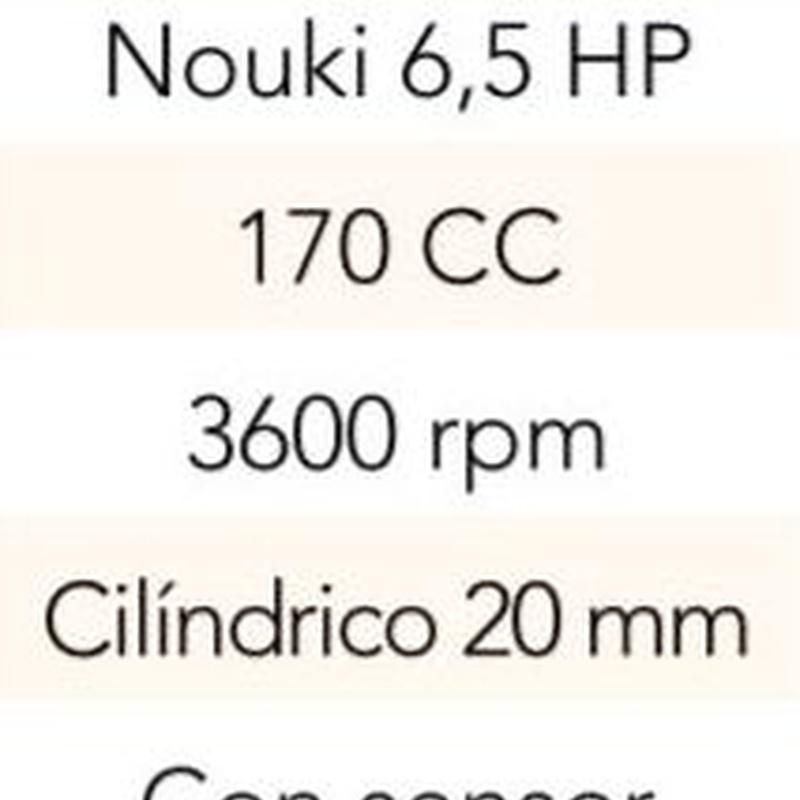 MOTOR (TIPO HONDA) 170 cc 6,5 HP EJE CILINDRICO 20 MM  Cód. HS-700: Productos y servicios de Maquiagri