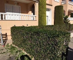 Mantenimiento y limpieza de jardines