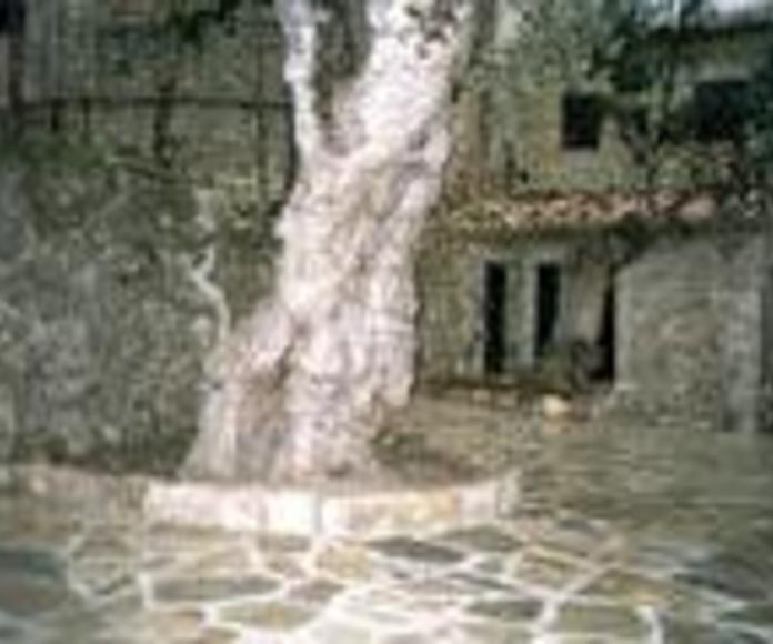Restauración integral de fincas: SERVICIOS de Tot Pedra