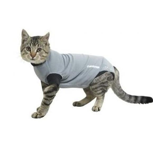 Buster Body Suit EasyGo Easy go para gatos comprar en Madrid veterinario veterinaria