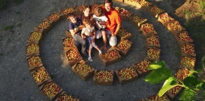 Cambio permanente - Permacultura: hacia una cultura de paz