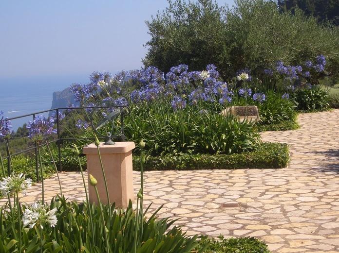 Diseño y mantenimiento de jardines en Mallorca - Vinagrella Jardins