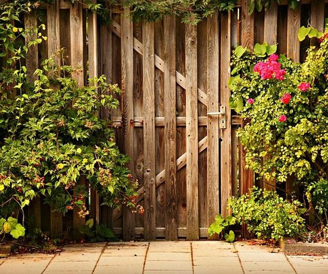 Las rosas y los poetas