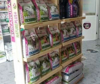 Tienda de mascotas: Servicios de Qué Perro!! Arrecife