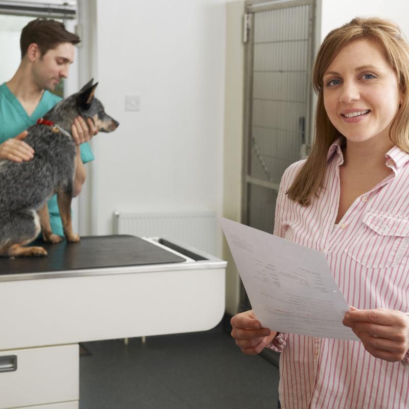 Medicamentos veterinarios: Servicios de Clínica Veterinaria La Adrada
