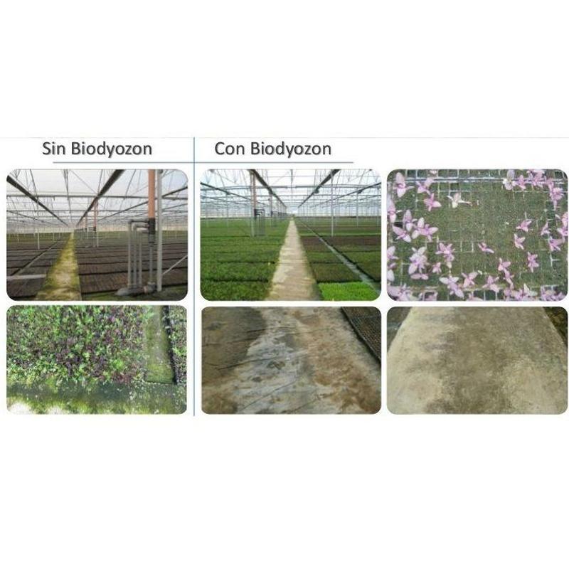 Beneficios para la agricultura: Tratamiento de aguas de SOB Distribuidores