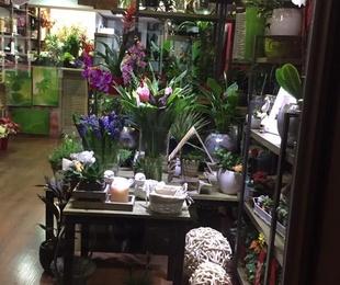 Flor artificial y natural