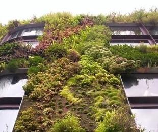 Edificios verdes para luchar contra el cambio climático