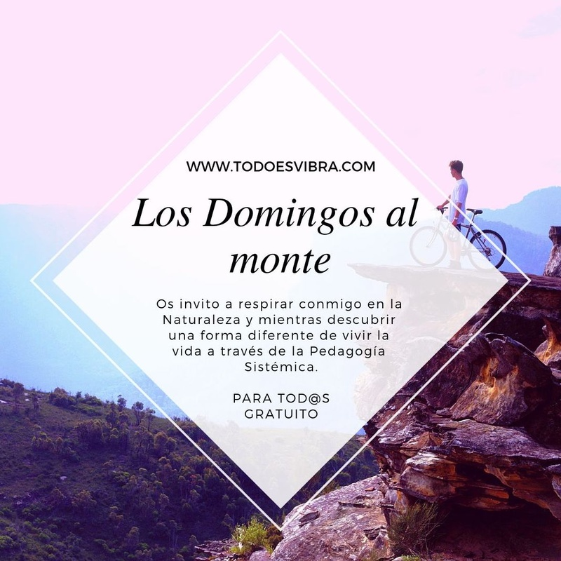 Los Domingos al Monte: TERAPIAS Y EVENTOS de Todo Es Vibra