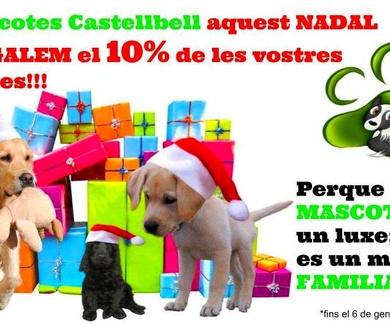 10% DE REGAL EN TOTES LES TEVES COMPRES!! A MASCOTES CASTELLBELL S.L