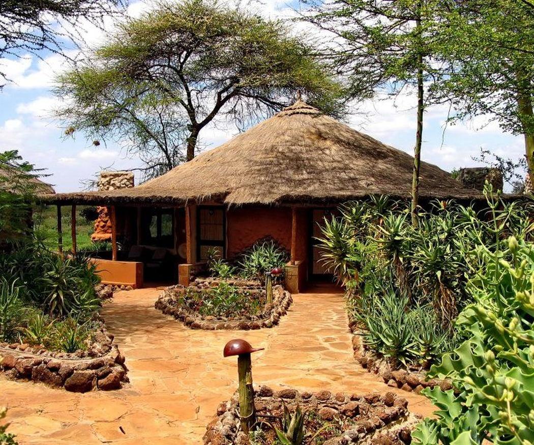 Cualidades del junco africano