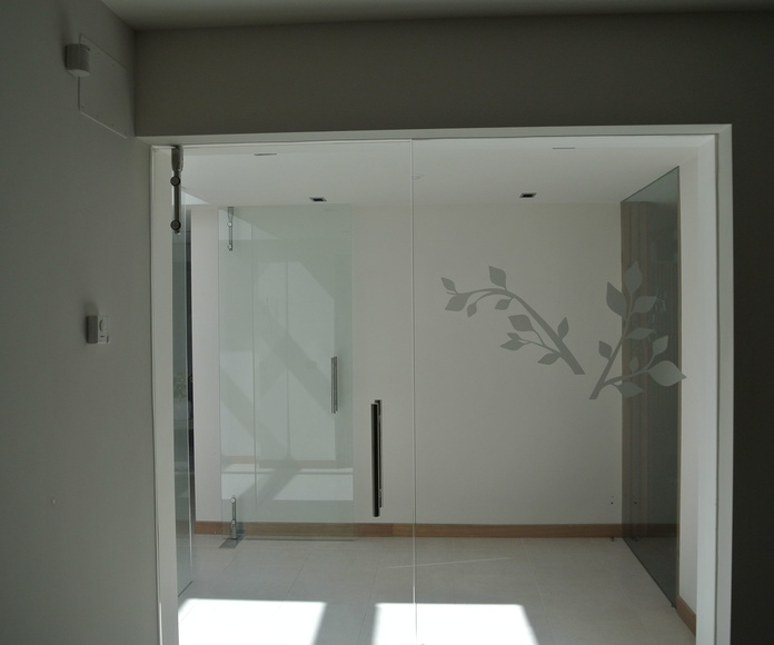 Puertas: Catálogo de Alusiero Carpintería de Aluminio