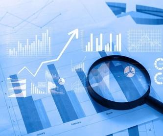 Asesoría fiscal: Servicios  de Asesoría Mezan
