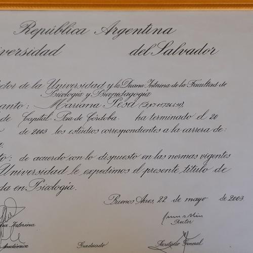 Titulo Universitario  Agentina