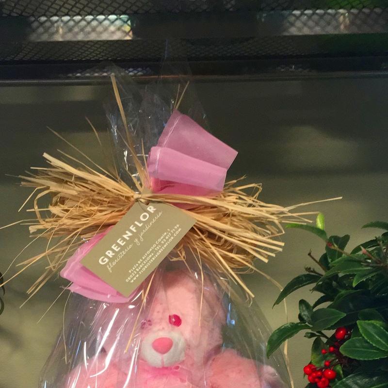 Tartas de pañales con peluches y complementos de bebé.: Productos y servicios de Greenflor