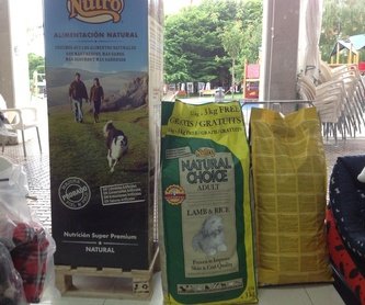 Peluquería canina: Servicios de Peluquería Huellas Donosti
