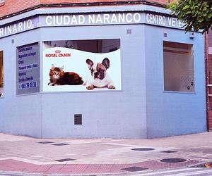 Centro veterinario en Asturias