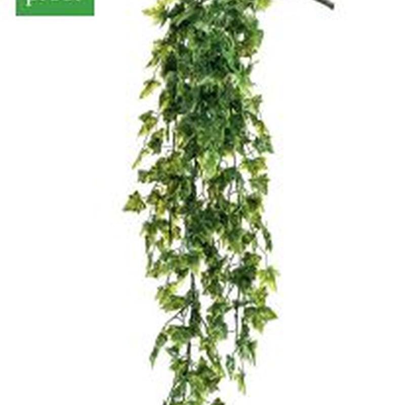Planta colgante exterior 421431: ¿Qué hacemos? de Ches Pa, S.L.