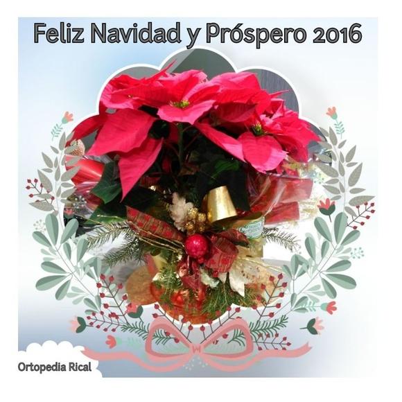FELIZ NAVIDAD Y PRÓSPERO 2016
