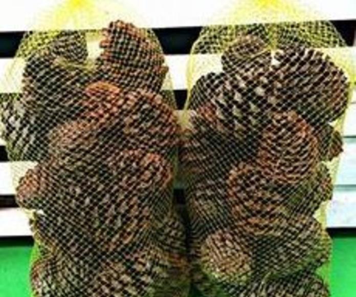 Sacos de piñas: NUESTROS PRODUCTOS de Mofusa