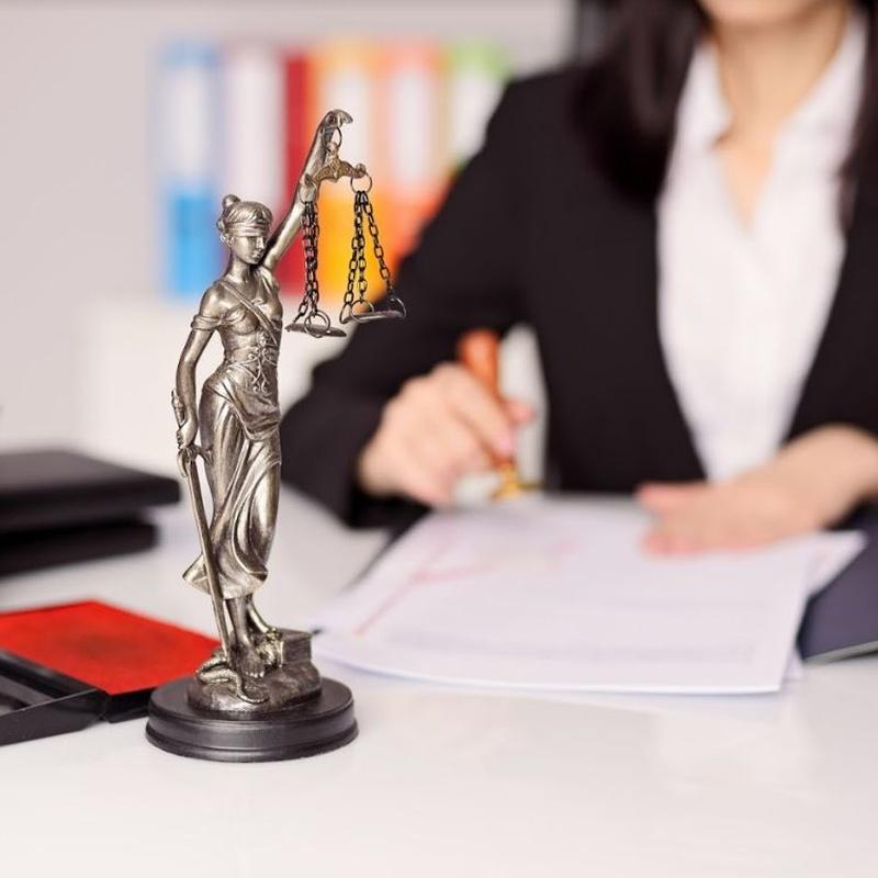 Derecho administrativo: Especialidades jurídicas de Iñarrairaegui & Amadoz