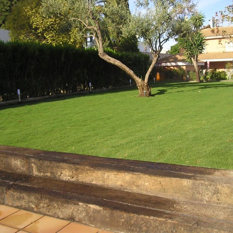 CONSTRUCCIONES DE JARDINES : Servicios de Jardines y paisajes