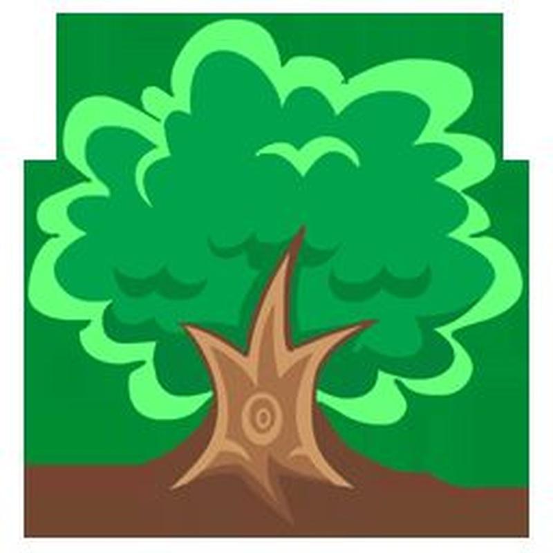 fumigar pinos procesionaria