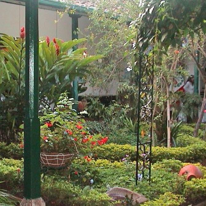Tu jardín interior