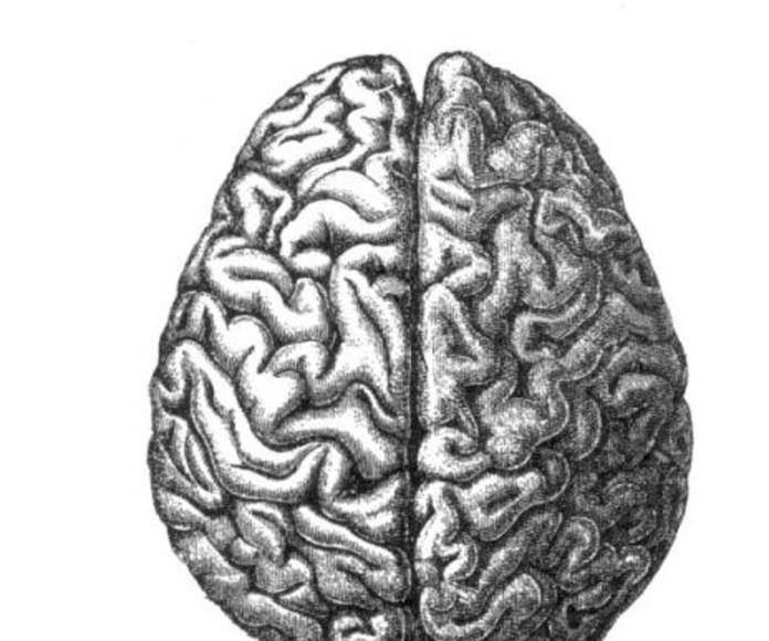 Psiclogía vs. Psiquiatría Madrid