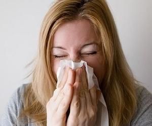 Combate la alergia primaveral con mosquiteras