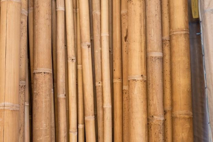 Bambú: Servicios de Manufactures Piter