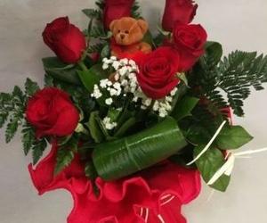 Rosas con peluchín