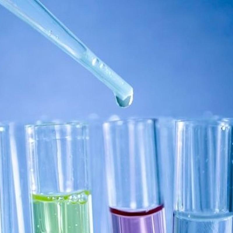 Análisis clínicos: Catálogo de Clínica Veterinaria - Lab. Anatomía Patológica
