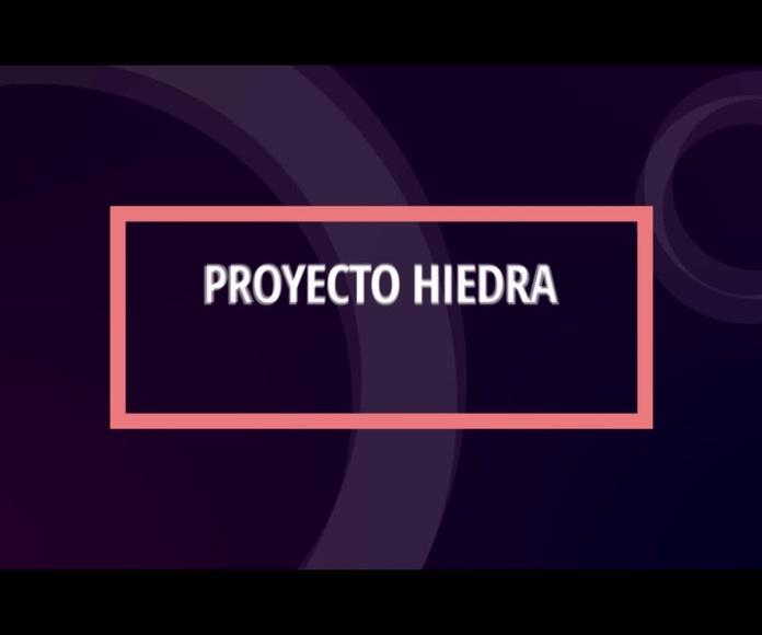 Hiedra: Proyectos y Servicios de Asociación Domitila
