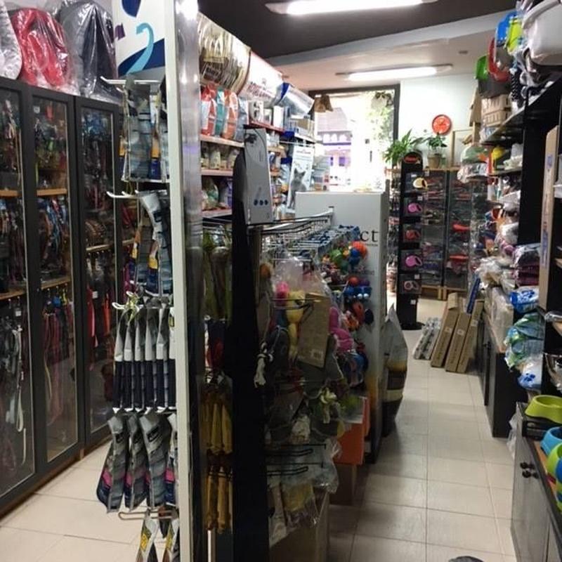 Juguetes: Productos y servicios de Zintzo